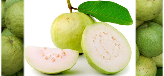 Healthy Cook: Springtime treats with a tropic guava twist